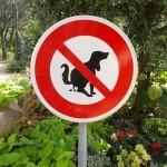 Poop, poop, poop. Not allowed.